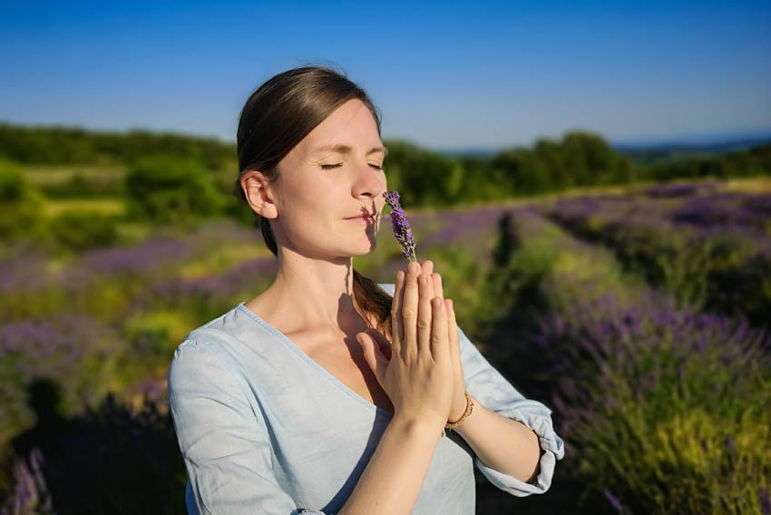 lavendel-aetherisches-oel-meditation