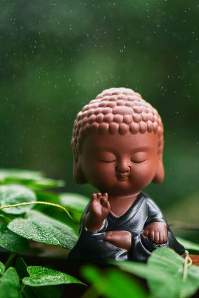 mudra-buddha-handstellung
